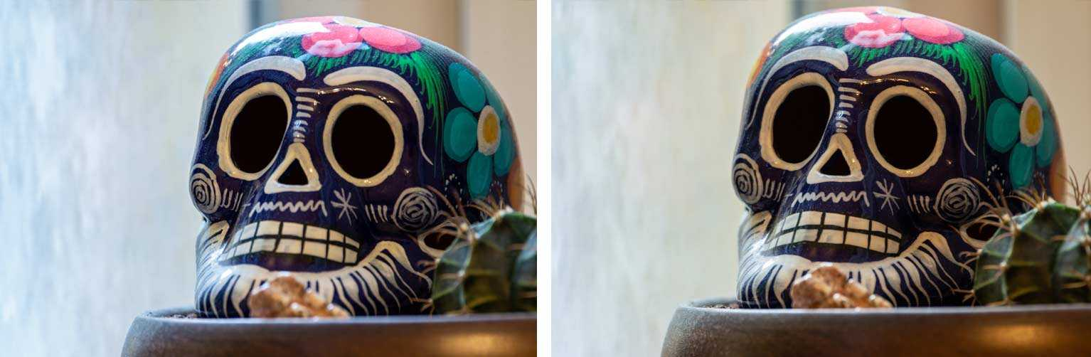 Comparison of two photos of a decorated porcelain skull from Mexico. Again, images are practically identical except the left has slightly more blue in the highlights.