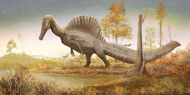 Spinosaurus with a thick, paddle-shaped tail stands at the edge of a pool.