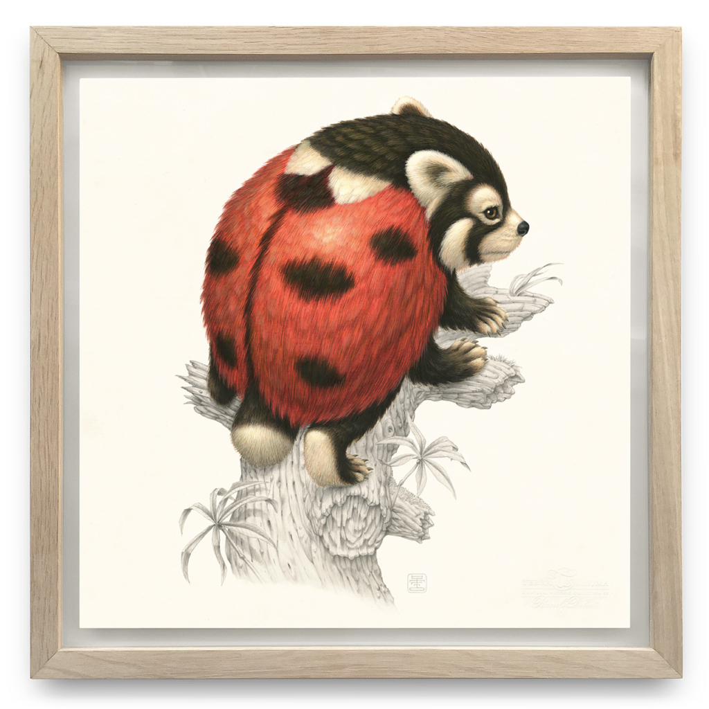 A fluffy red panda like animal with six limbs and a short tail climving a log; its back is coloured to resemble the marking on a ladybird beetle, red with black dots.