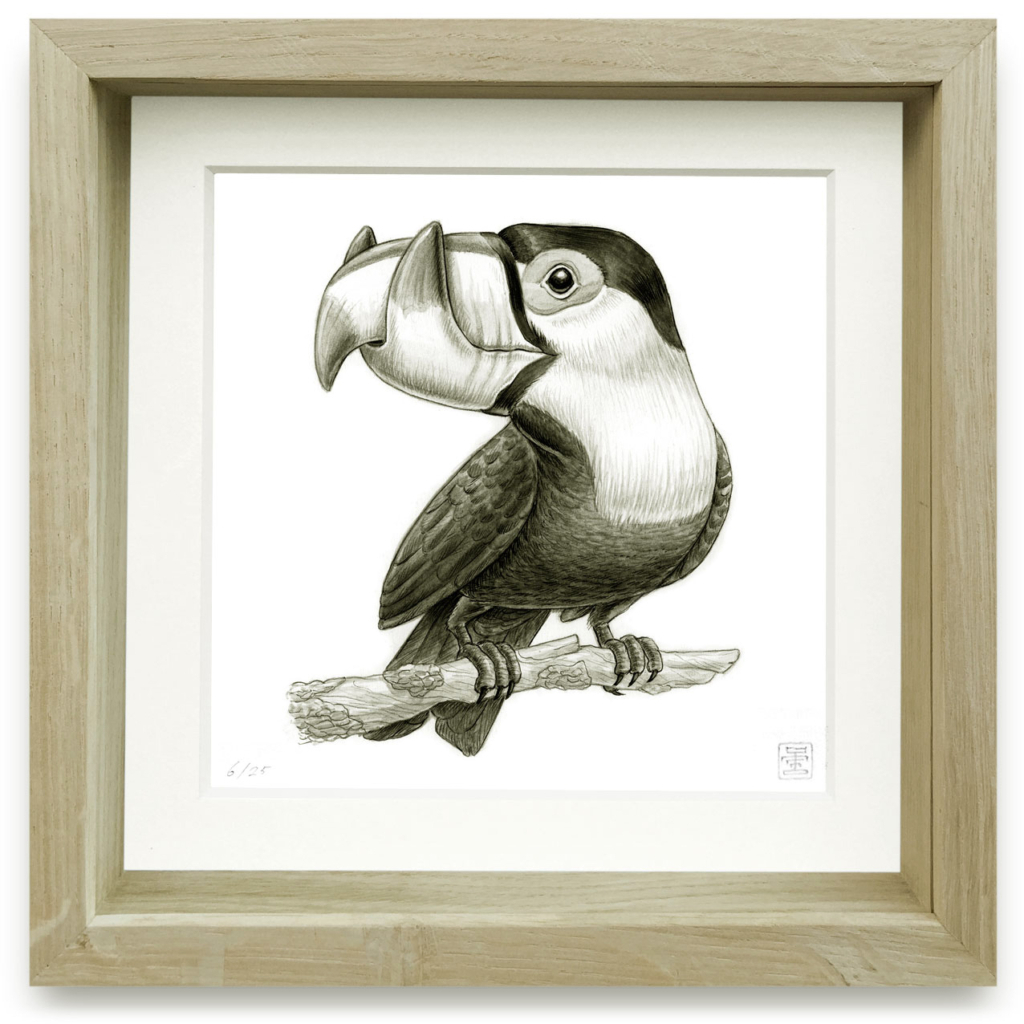 """A black and white watercolour painting of a toucan, except the bill is chunkier than normal and has two protruding """"fangs"""" that cut up and around the outside."""